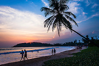Mirissa Beach, couples taking a romantic walk under a palm tree at sunset, South Coast of Sri Lanka, Southern Province, Asia. This is a photo of a couples taking a romantic walk along Mirissa Beach, under a palm tree at sunset in Sri Lanka, Asia. Mirissa Beach, a popular palm tree lined beach on the South Coast of Sri Lanka is often blessed with a beautiful sunset, perfect for a romantic walk along the beach.