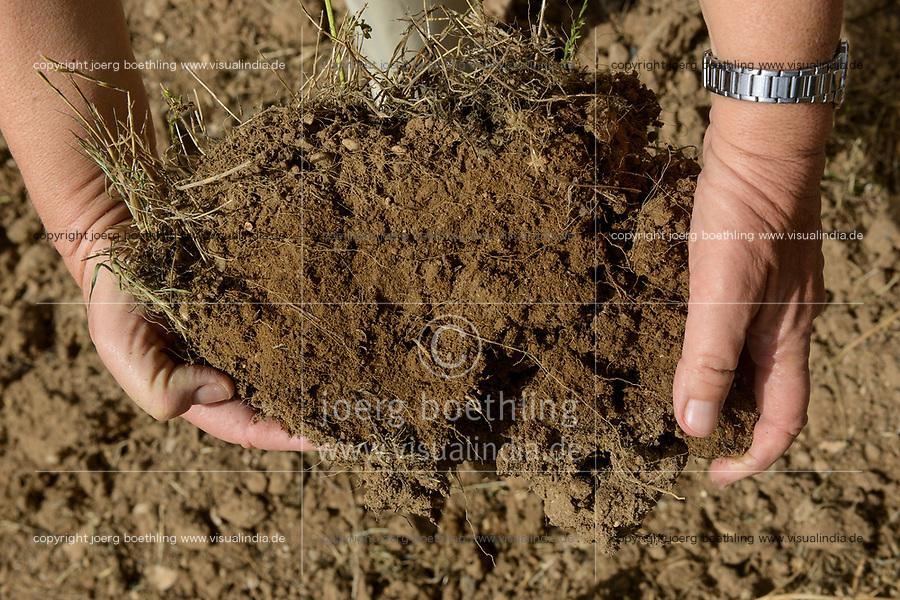 EGYPT, Bilbeis, Sekem organic farm, desert farming, soil improvement with compost / AEGYPTEN, Bilbeis, Sekem Biofarm, Landwirtschaft in der Wueste, Bodenverbesserung mit Kompost