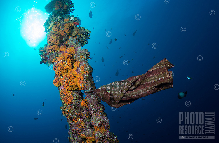 An American flag waves from the mast of the orange-cup, coral-encrusted mast of the Mahi, a ship intentionally sunk as an artifical reef off of Waianae, O'ahu.