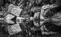 Limestone rocks reflecting in Oparara River near Karamea, Kahurangi National Park, Buller Region, West Coast, New Zealand, NZ