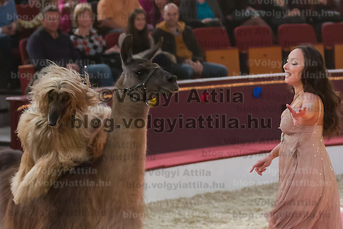 Artist Joulia Tchakanova performs with dogs and lamas during the premiere of the new show titled Lights of the Universe in Budapest, Hungary on October 05, 2013. ATTILA VOLGYI