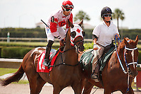 It Takes Heart on post parade for The Carry Back Stakes (G3), Calder Race Course, Miami Gardens Florida. 07-07-2012.  Arron Haggart/Eclipse Sportswire.