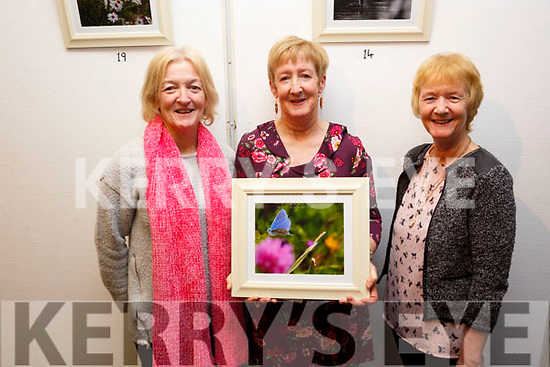 Catherine Dolan at her Photographic Exhibition in the Tralee Library on Tuesday night, where the proceeds of the event went to theTralee/West Kerry Multiple Sclerosis branch. L-r, Jackie Linnane, Catherine Dolan and Veronica Curtain as Catherine displays her favourite photo, The Common Blue Butterfly, My Beauty.