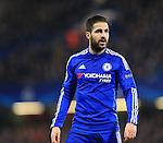 Chelsea's Cesc Fabregas in action<br /> <br /> - UEFA Champions League - Chelsea vs Paris Saint Germain - Stamford Bridge - London - England - 9th March 2016 - Pic David Klein/Sportimage