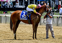 ELMONT, NY - JUNE 09: Monomoy Girl #3, ridden by Florent Geroux, gets a hug from her jockey after winning the Acorn Stakes on Belmont Stakes Day at Belmont Park on June 9, 2018 in Elmont, New York. (Photo by Bob Mayberger/Eclipse Sportswire/Getty Images)