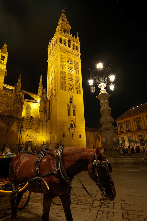 A horse drawn carriage awaits travelers under the bell-tower of Sienna's Cathedral.