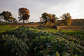 Tarrytown, New York<br />