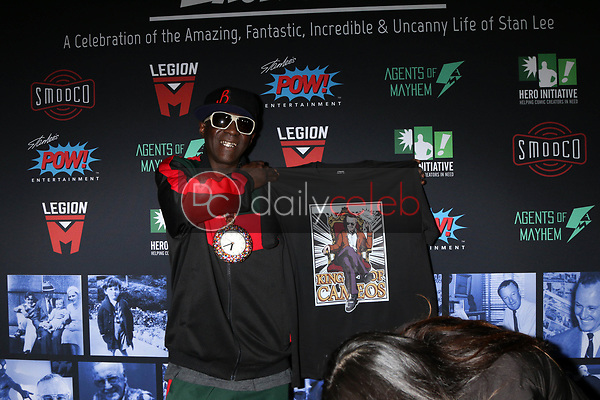 "Flavor Flav<br /> at ""Excelsior! A Celebration of the Amazing, Fantastic, Incredible & Uncanny Life of Stan Lee,"" TCL Chinese Theater, Hollywood, CA 01-30-19<br /> David Edwards/DailyCeleb.com 818-249-4998"