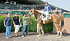 S S Skittles winning at Delaware Park on 7/16/12