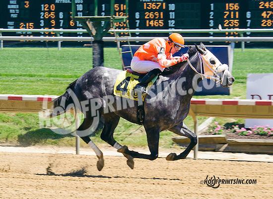 Ebony Two Star winning at Delaware Park on 5/23/15