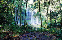 Palau Micronesia Waterfall