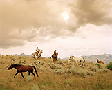 USA, Montana, cowboys sitting on horseback after letting other horses to pastrue, Mountain Sky Guest Ranch
