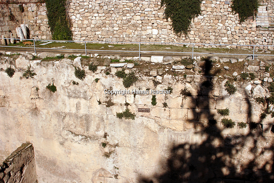 Israel, Jerusalem, The Pool of Bethesda, the central dam<br />
