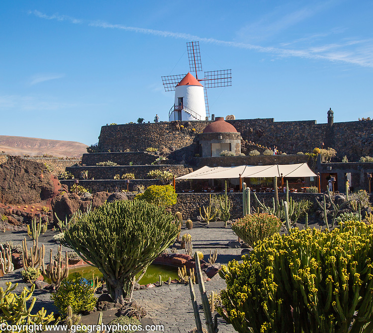 Cactus plants and windmill Jardin de Cactus designed by César Manrique, Guatiza, Lanzarote, Canary Islands, Spain.