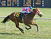 Chinglish winning at Delaware Park on 9/24/12