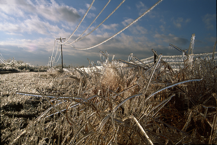 A heavy coating of ice strains power-lines to the breaking point after a severe ice-storm strikes central Oklahoma in February.