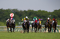 FUCHU,JAPAN-MAY 21: Soul Stirring #2,ridden by Christophe Lemaire,wins the Japanese Oaks at Tokyo Racecourse on May 21,2017 in Fuchu,Tokyo,Japan (Photo by Kaz Ishida/Eclipse Sportswire/Getty Images)