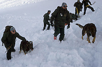 Forestali mentre cercano le vittime della valanga.Forestry while looking for victims of avalanche..