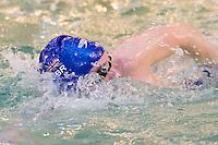 Elite GB Athletes & Swim Run - Great East Swim