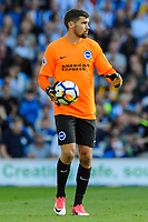 Mathew Ryan Goalkeeper of Brighton & Hove Albion (1)Mathew Ryan Goalkeeper of Brighton & Hove Albion (1)  during the EPL - Premier League match between Brighton and Hove Albion and Manchester City at the American Express Community Stadium, Brighton and Hove, England on 12 August 2017. Photo by Edward Thomas / PRiME Media Images.