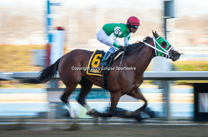 March 7, 2020: Diamond King, ridden by Kendrick Carmouche, wins the 2020 running of the Stymie Stakes at Aqueduct Racecourse in South Ozone Park, NY on March 7, 2020. Sophie Shore/ESW/CSM
