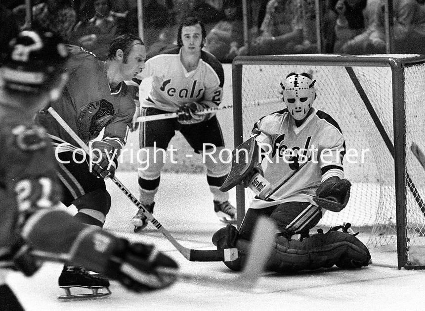 Chicago Blackhawks Dennis Hull shot on Seal goalie Gilles Meloche..(1971 photo/Ron Riesterer)