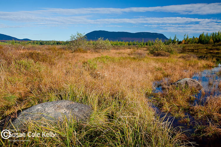 Big Spencer Mountain over Lazy Tom Bog in Piscataquis County, ME, USA
