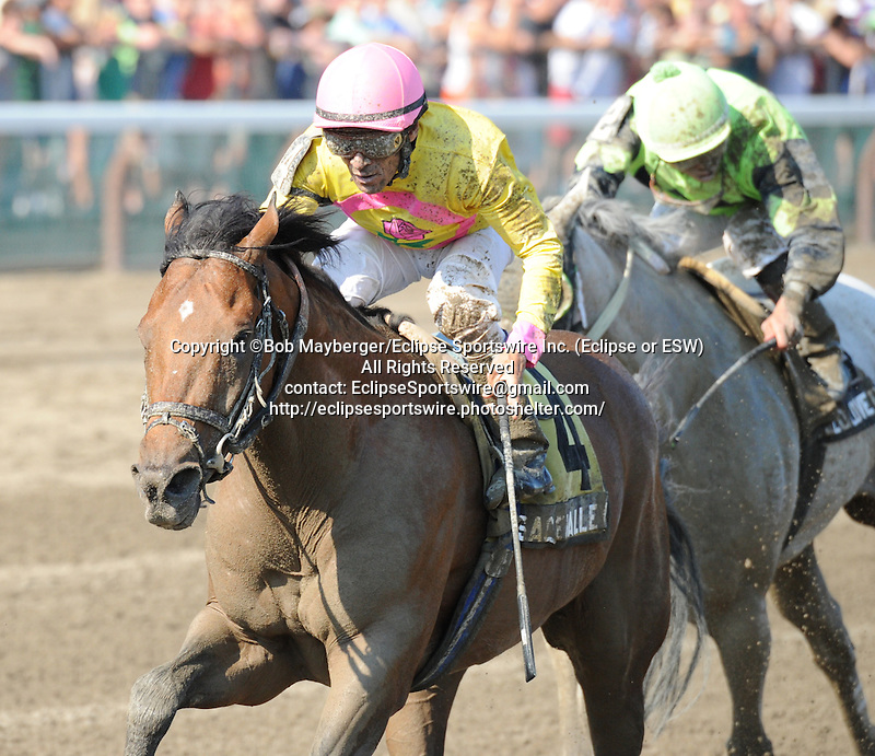 Sage Valley (no. 4), ridden by Cornelio Velasquez and trained by Rudy Rodriguez, wins the 6th running of the grade 3 James Marvin Stakes for three year olds and upward on July 19, 2013 at Saratoga Race Track in Saratoga Springs, New York.  (Bob Mayberger/Eclipse Sportswire)
