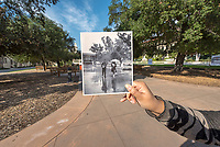 Rainy day retake in the Academic Quad. FlashbackFriday to 1963, original by Joe Friezer.<br />