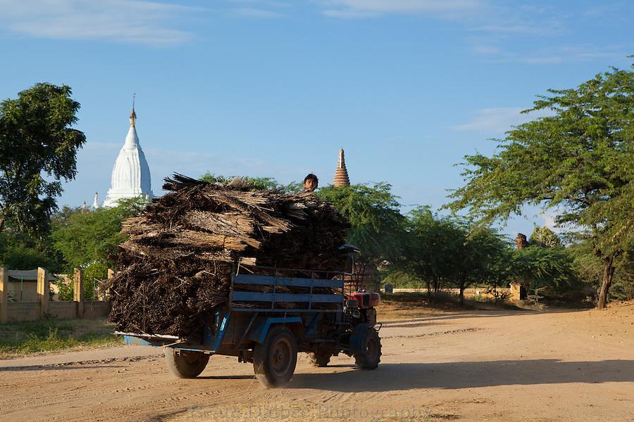 truck transporting reeds in Bagan, Myanmar