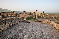The House of Dionysus and the Four Seasons on the Decumanus Maximus in Volubilis, Northern Morocco, with its floor mosaic of Dionysus discovering Ariadne asleep, 3rd century AD. Volubilis was founded in the 3rd century BC by the Phoenicians and was a Roman settlement from the 1st century AD. Volubilis was a thriving Roman olive growing town until 280 AD and was settled until the 11th century. The buildings were largely destroyed by an earthquake in the 18th century and have since been excavated and partly restored. Volubilis was listed as a UNESCO World Heritage Site in 1997. Picture by Manuel Cohen