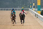 February 17, 2020: Bayakoa Stakes race at Oaklawn Racing Casino Resort. Go Google Yourself (2) with jockey Brian Joseph Hernandez Jr. aboard and winning the Bayakoa Stakes at Oaklawn Racing Casino Resort in Hot Springs, Arkansas on Feburary 17, 2020. Ted McClenning/Eclipse Sportswire/CSM (Photo by Ted McClenning/Eclipse Sportswire/Cal Sport Media)