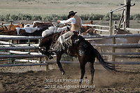 bucked Cowboys working and playing. Cowboy Cowboy Photo Cowboy, Cowboy and Cowgirl photographs of western ranches working with horses and cattle by western cowboy photographer Jess Lee. Photographing ranches big and small in Wyoming,Montana,Idaho,Oregon,Colorado,Nevada,Arizona,Utah,New Mexico.