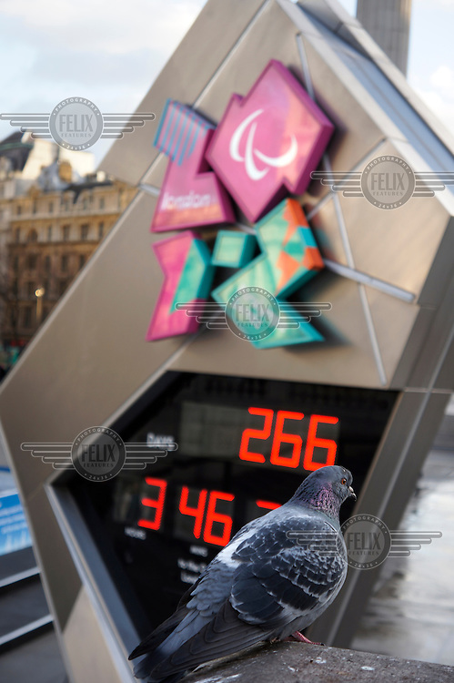 A pigeon stands near the London 2012 Olympics countdown clock in Trafalgar Square.