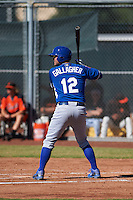 Kansas City Royals Cam Gallagher (12) during an instructional league game against the San Francisco Giants on October 22, 2015 at the Giants Baseball Complex in Scottsdale, Arizona.  (Mike Janes/Four Seam Images)