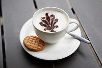 Nederland Baarn 2017. Paleis Soestdijk.  Kopje koffie in de Oranjerie. . Foto Berlinda van Dam / Hollandse Hoogte