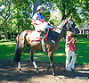 Middle Road before The Longines Gentlemans International Fegentri race at Delaware Park on 9/14/15 - Mr. Alexandra Velezy aboard