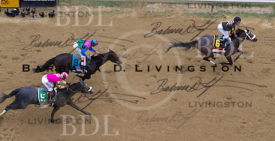 Oxbow wins the 2013 Preakness at Pimlico Race Course, with Gary Stevens up, for trainer Wayne Lukas and owner Calumet Farm.