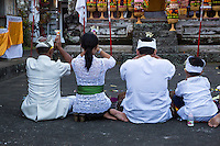 Bali, Indonesia.  Hindu Family Praying for a Bountiful Rice Harvest.  Pura Dalem Temple.  Dlod Blungbang Village.