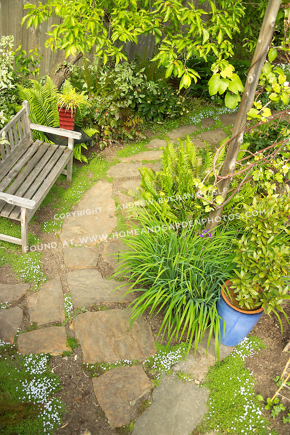 looking down from above on a teak garden bench sitting alongside a flagstone path bordered on both sides by lush gardens, and complementary red and blue garden pots in this residentail backyard
