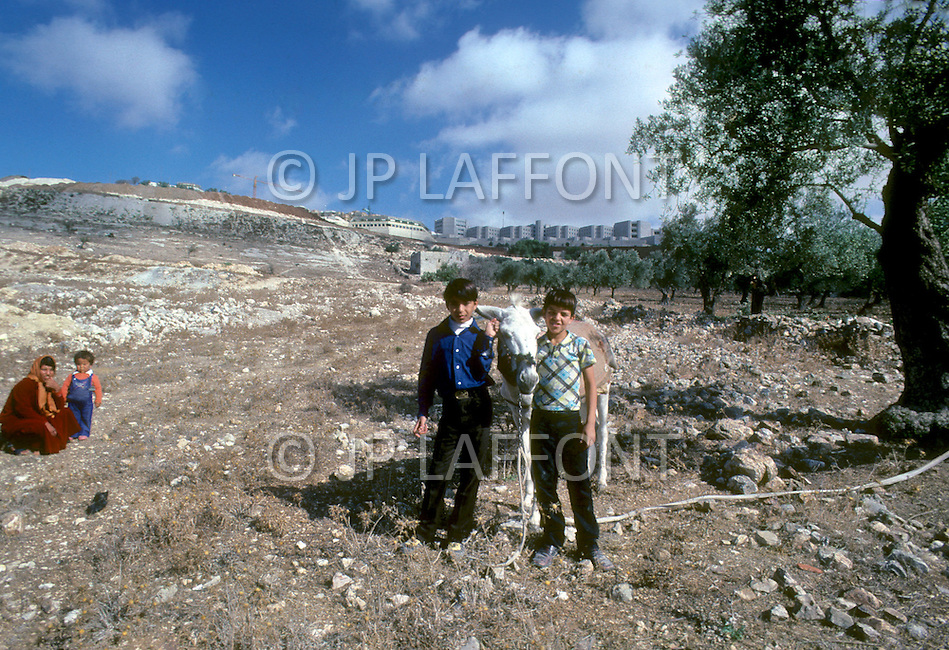 Jerusalem, Israel, November, 1980. Development in progress in Gilo area.