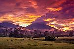 New Costa Rica