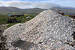 Oyster shells in Cromane harbour.<br /> Photo: Don MacMonagle <br /> e: info@macmonagle.com