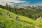 Biking the wasatch Crest trail above Park City Utah