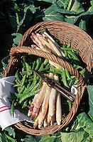 Europe/France/Centre/37/Indre-et-Loire: Légumes de Touraine - Asperges et petits pois