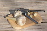 Knoblauch, Knob-Lauch, Allium sativum, Garlic