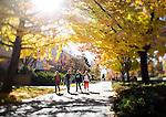 1210-62 243<br /> <br /> 1210-62 GCS Fall Campus<br /> <br /> Leaves, fall, JFSB Quad<br /> <br /> October 30,2012<br /> <br /> Jaren Wilkey/BYU<br /> <br /> &copy; BYU PHOTO 2012<br /> All Rights Reserved<br /> photo@byu.edu  (801)422-7322