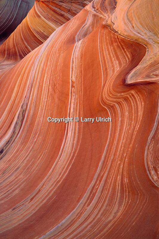 Navajo sandstone designs<br /> Coyote Buttes<br /> Paria Canyon-Vermilion Cliffs Wilderness<br /> Colorado Plateau,  Arizona