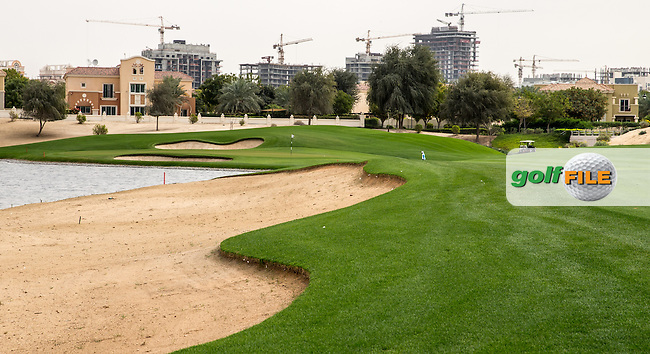 Pond edge and approach to the 7th green at The Els Club , Dubai, United Arab Emirates.  28/01/2016. Picture: Golffile | David Lloyd<br /> <br /> All photos usage must carry mandatory copyright credit (&copy; Golffile | David Lloyd)