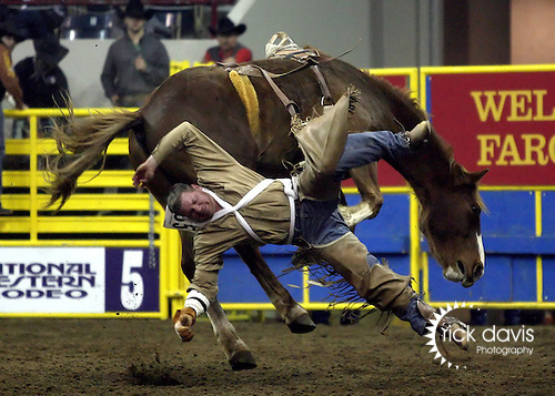 1/18/09--Photo by Rick Davis--PRCA cowboy Trent Coates of Spring Creek, Nevada makes an early exit from the bronc Snappy Tune during action at the 103rd National Western Stock Show and Rodeo in Denver, Colorado.